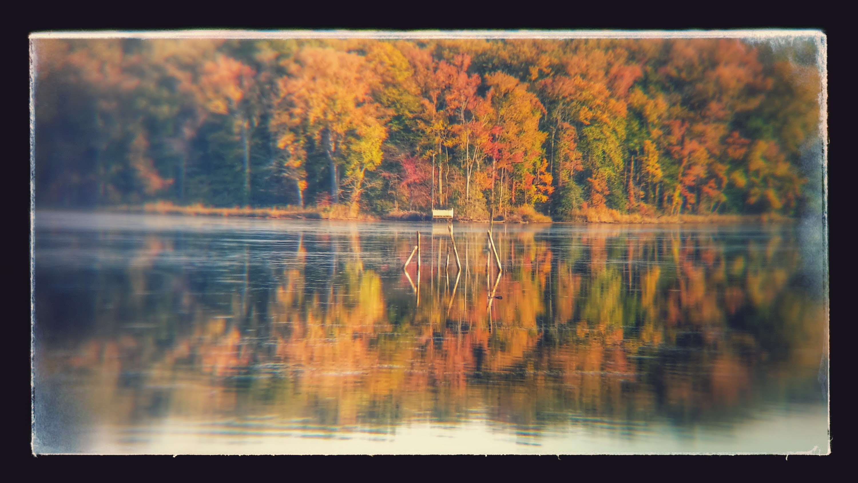 20151022_171007_HDR-EFFECTS